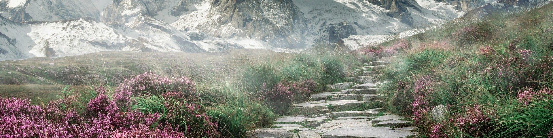 Treppenstufe_berg